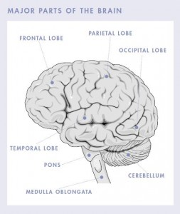 brain tumor symptoms relating to the brain